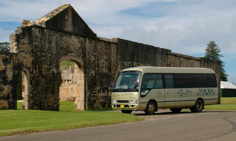 Convict Settlement Tour Pinetrees7