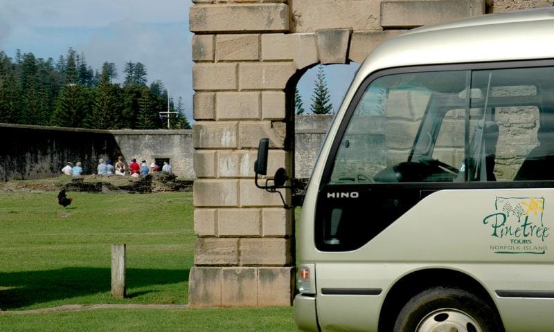 Convict Settlement Tour Pinetrees8