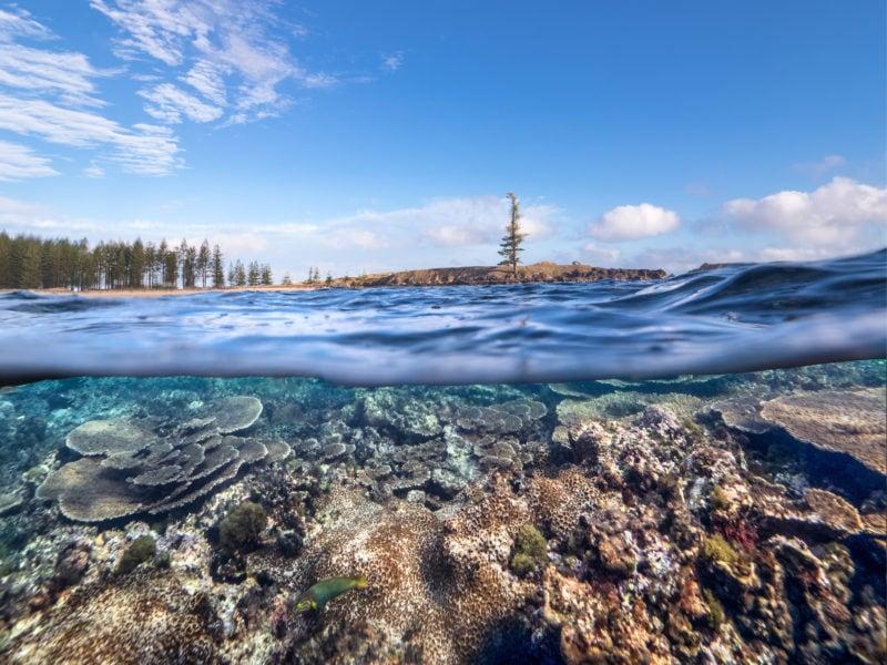 Norfolk Island Travel Centre Tourism B Photos8