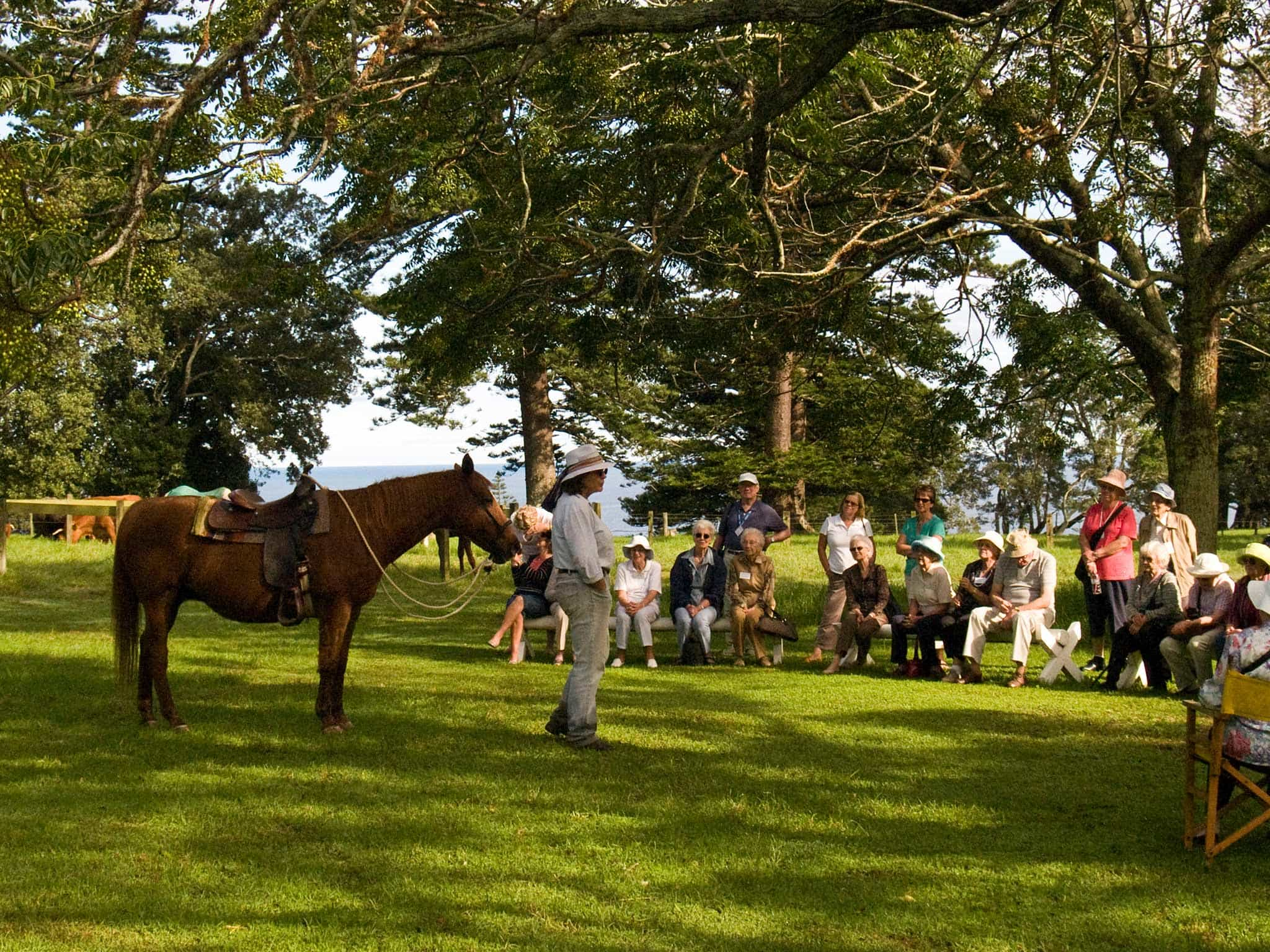 Norfolk Island Travel Centre Tours And Activities Behind The Hedges Pinetree Tours