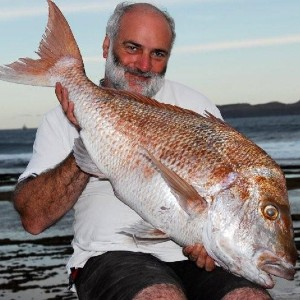 Snapper Low Res