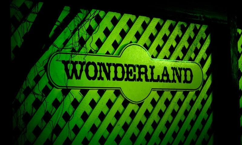 Wonderland By Night Pinetree Tours3