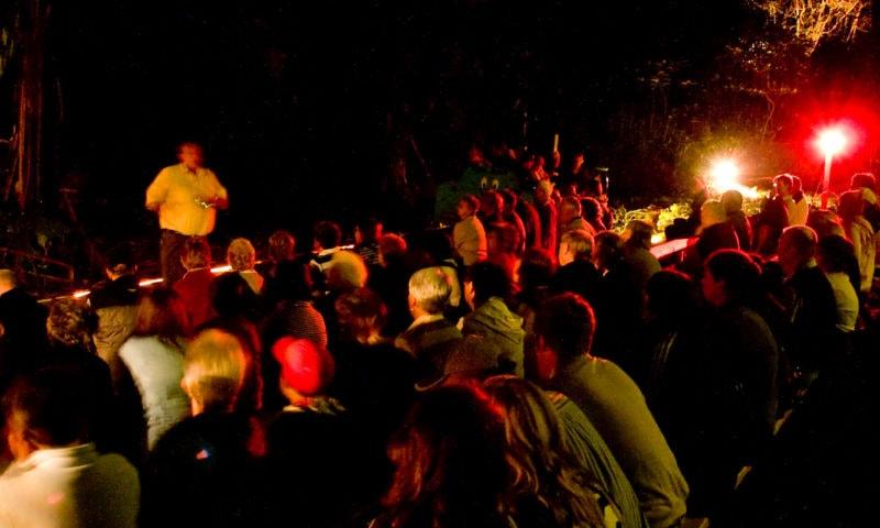 Wonderland By Night Pinetree Tours5