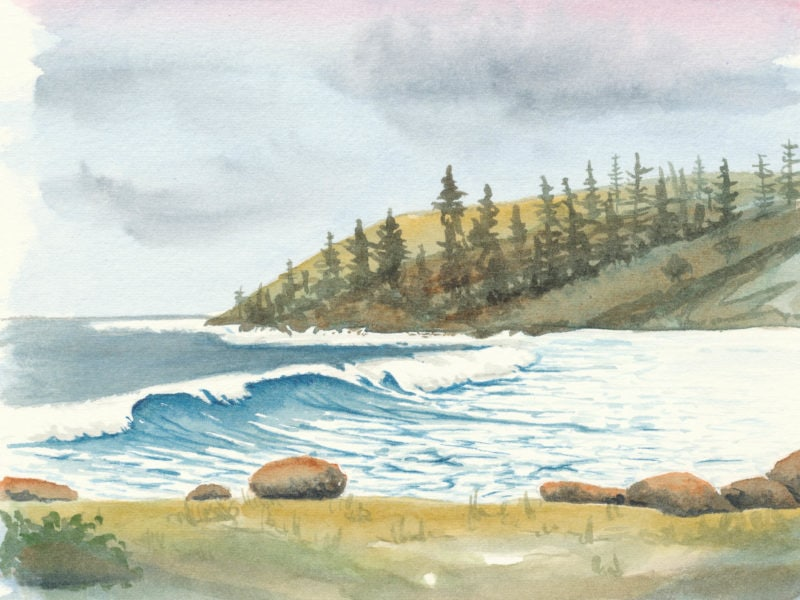 Norfolk Island Travel Centre Belinda Biggs Ball Bay Painting