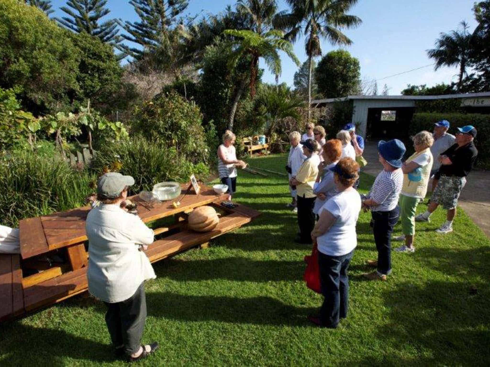 Norfolk Island Travel Centre Garden Clubs Of Australia 2019 Convention Jane Tour Norfolk Island
