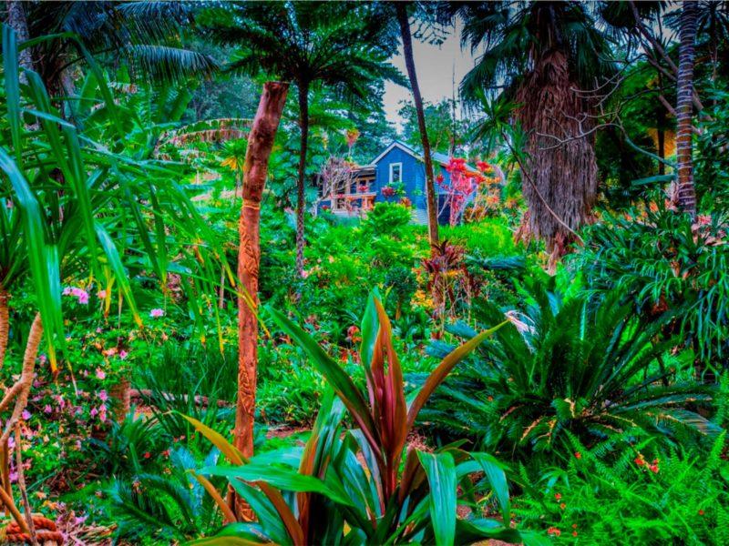Norfolk Island Travel Centre Garden Clubs Of Australia 2019 Convention Tropical Gardens Music Valley 20092018 Norfolk Island 010