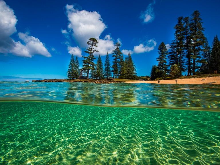 NorfolkIslandTravelCentre EmilyBay Underwater