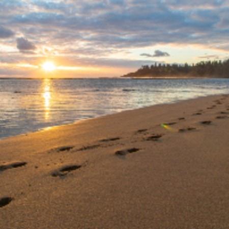 Beach Slaughter Bay Beach Norfolk Island Large 7641 (1)