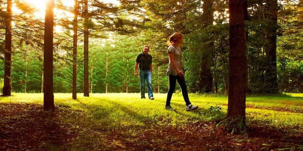Norfolk Island Travel Centre Couple Walking Hundred Acres